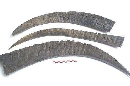 Bøffelhorn sideplate