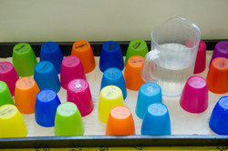 Routine (Named Cups)