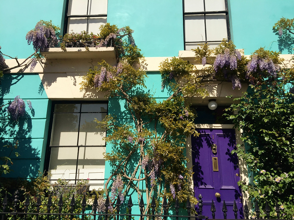 A bright blue house with complimenting purple door and wisteria