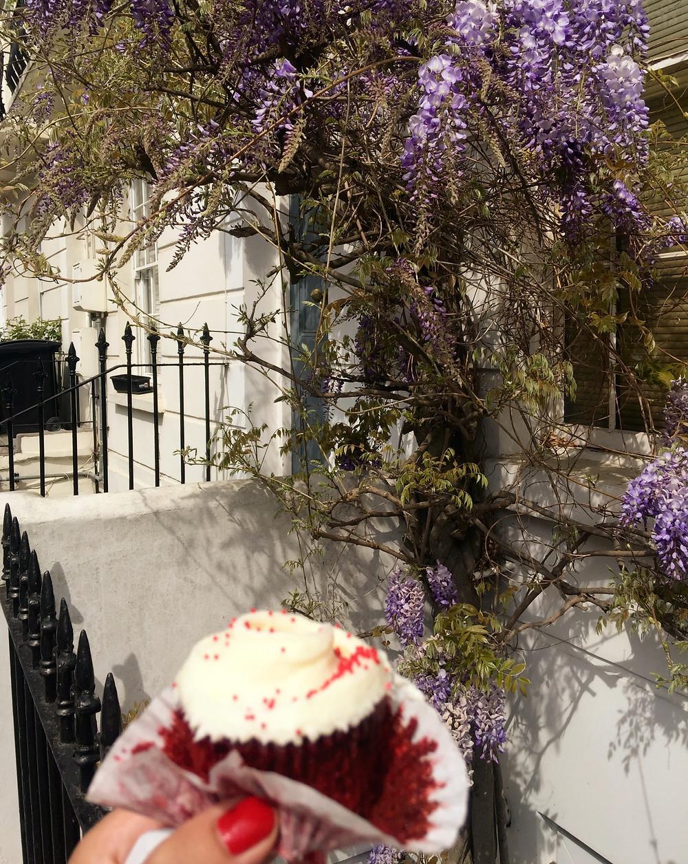 London, cupcakes, bakery, lockdown, wisteria