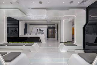 Shiny White Zayed-125.jpg