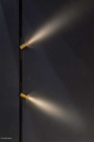 SOLIS TDS-171-Edit.jpg