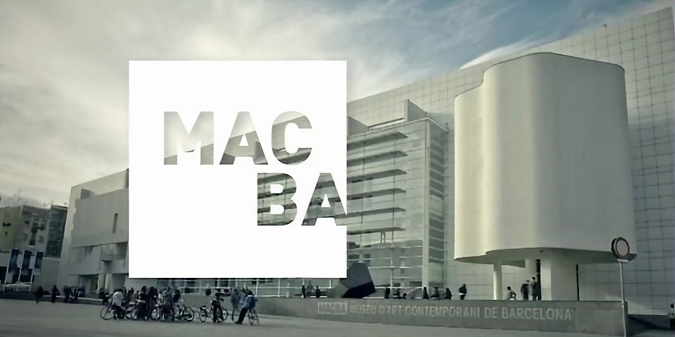 HOAF Посещение Музея MACBA Барселона