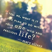 Mary-Oliver-quote11.jpg