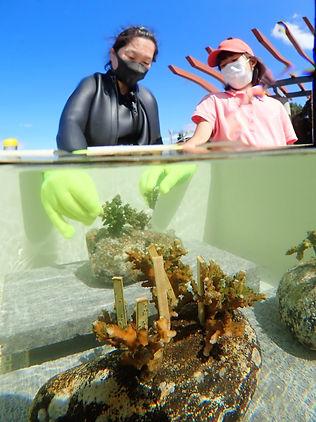 planting-coral (10).jpg