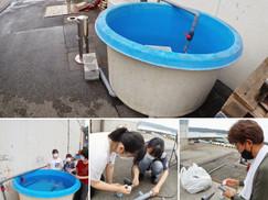 【7月6日】海の陸上活動
