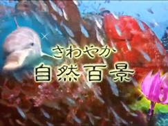 【5月16日】沼津の海