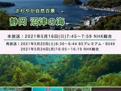 【5月12日】「NHKさわやか自然百景」にて