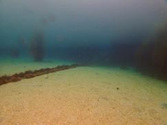 二層の潮で透明度の表記が微妙・・・