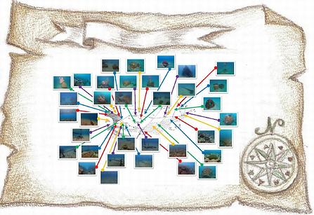 宝の地図.png
