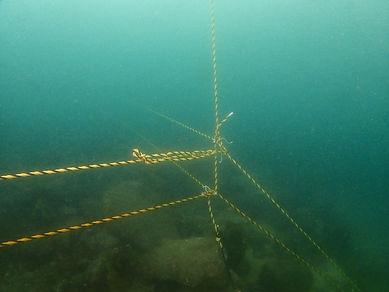海中の境界線 (2).JPG