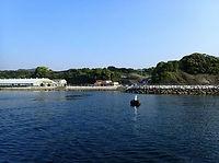平沢ビーチダイビングポイントの景観
