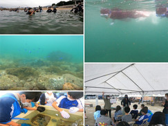 【10月16日】サンゴのフィールド学習