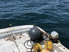 平沢ボートダイブエリアの整備