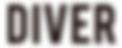 diver_logo_edited.png