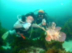 マンツーマンでの体験ダイビング