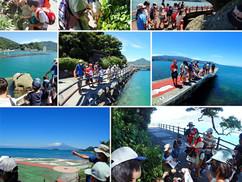 【8月5日】淡島の陸上探検