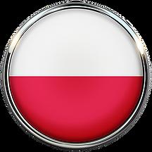 flaga polski nowa.png