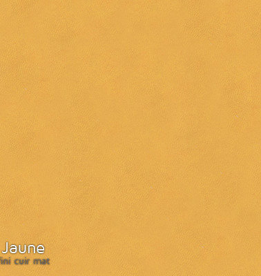 cuirette_6- jaune.jpg