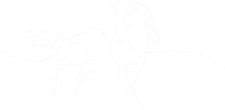 icon-1 white.png