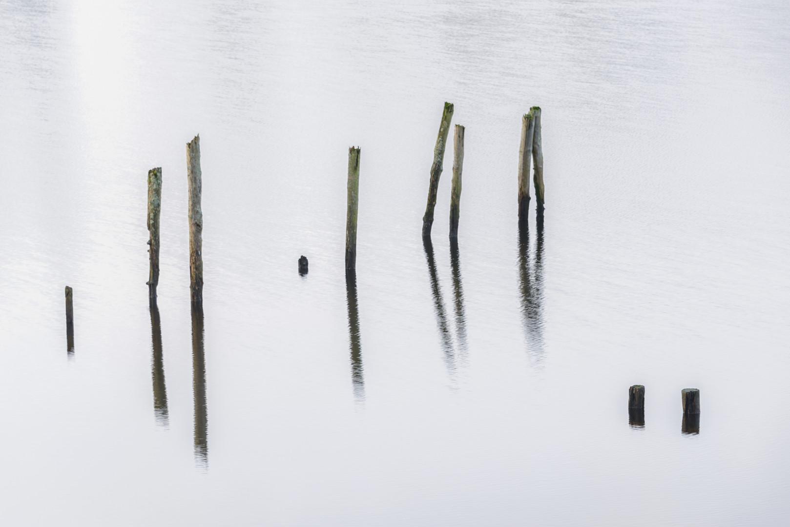 Old mooring posts
