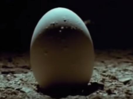 Alien Celebrates 40 Years This Weekend