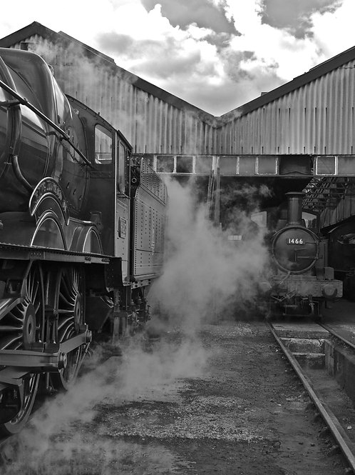 A 'King' on Shed