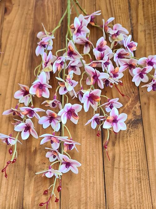 Flor sempre viva orquidia mini - haste longa