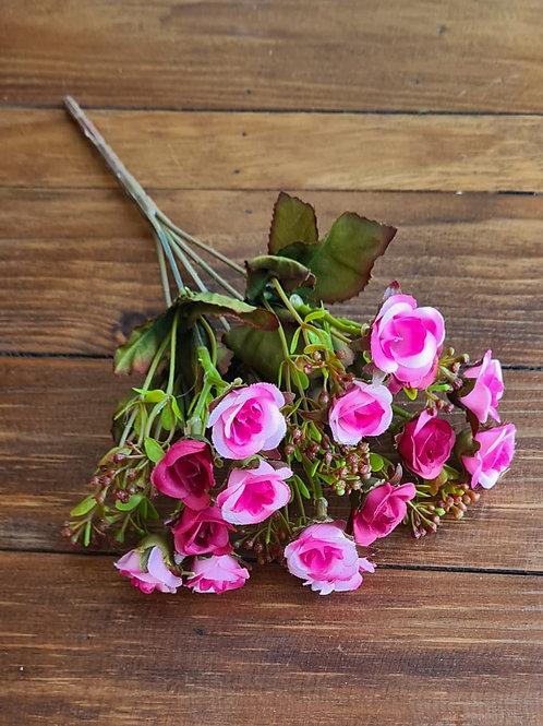 Buque Mini Rosa Rosa