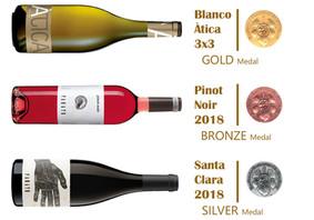 Three award-winning wines - Concours Tastavins D.O.Penedés 2019