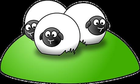 sheep-35599_640.png
