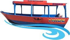 boat tours.png