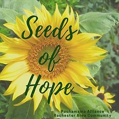 Seeds of Hope Logo.png