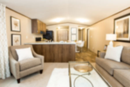 The Bliss Singlewide Mobile Home