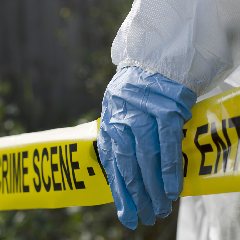 CSI detective project