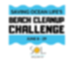 BEACH CLEAN-UP CHALLENGE.png