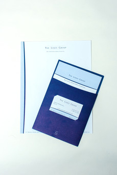 The Louis Group Brochure and Branding
