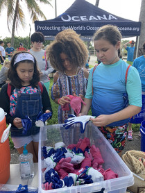 Shark Finning Discussion and Beach Cleanup