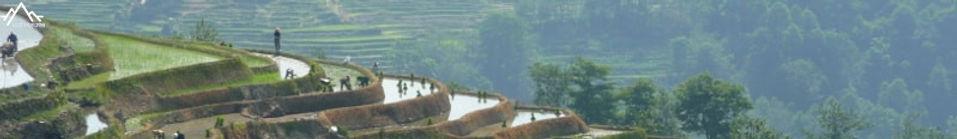 randonnée et trek dans les rizières de yuanyang