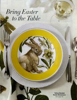 Yellow banded bunny