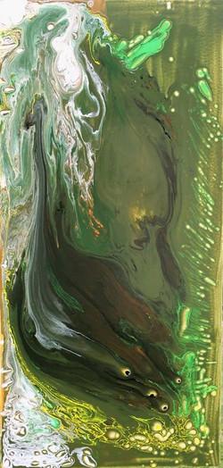 utricolaria
