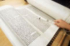 reading-torah.jpg