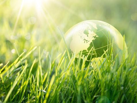 Semplificazioni in materia ambientale