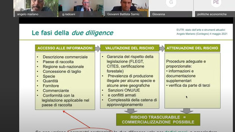 LEGNO - Registrazione webinar su Timber regulation e certificazioni forestali