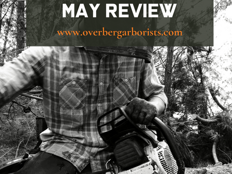 Overberg Arborists - May Reflection