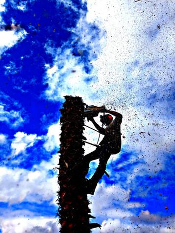 Andre Climbing 3