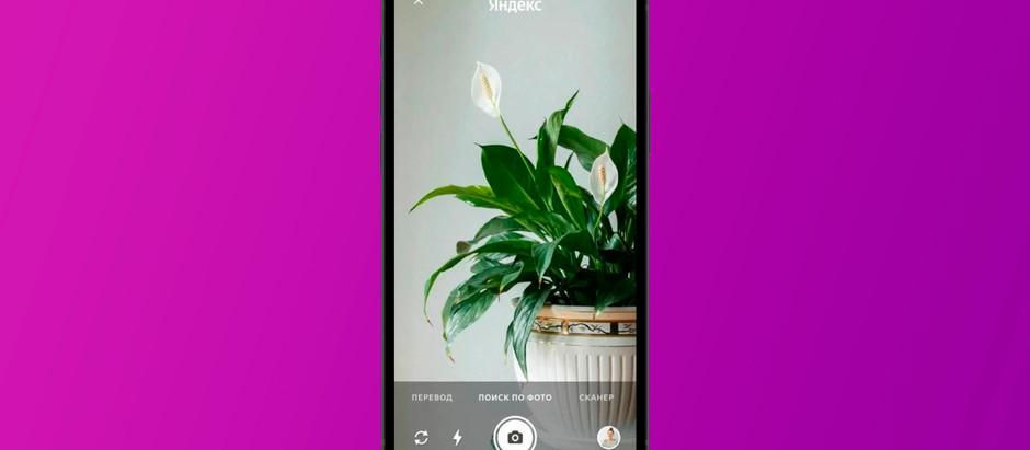 В приложении «Яндекс» появилась умная камера