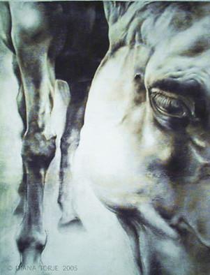 GRAZING HORSE / CHEVAL QUI BROUTE