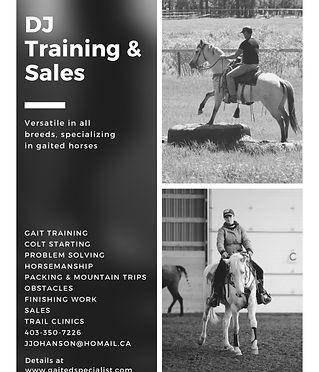 DJ Training & Sales.jpeg