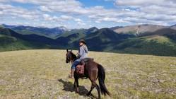Wild Hay Ridge